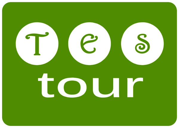 TES Tour logo board